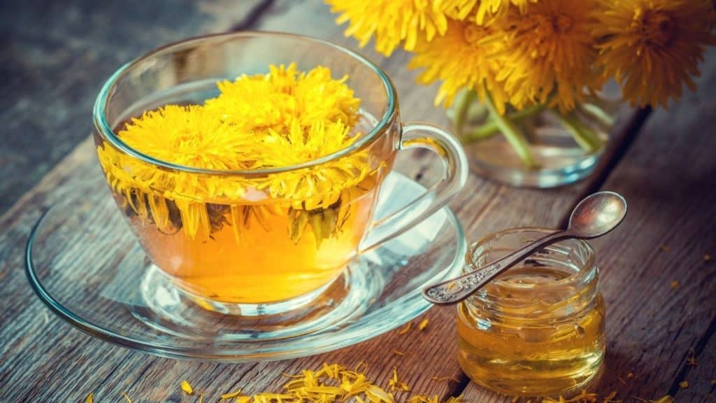 Herbal Teas That Are Good For Combating Viral Infections